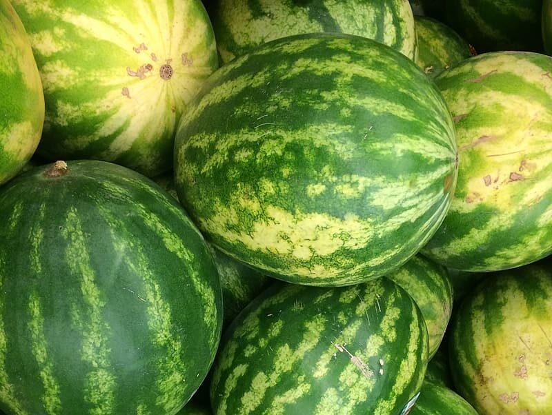 watermelon-e1595836586990.jpg